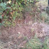"""""""ŠTA AKO JE UNUTRA NEČIJE NESTALO DETE"""" Otkad je pronašla misteriozni grob u dvorištu, baka Rada MOLI SAMO JEDNO"""