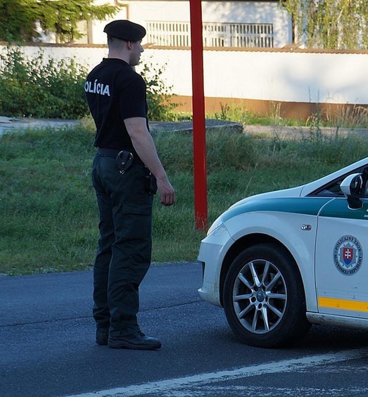 Slovačka policija Wikipedia Kiwiev