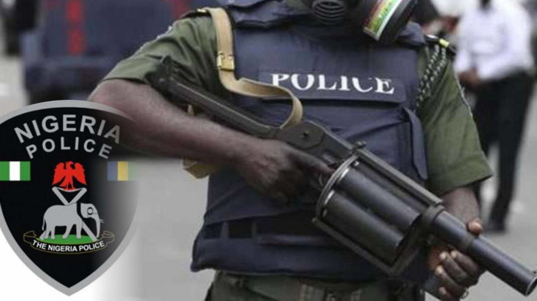 Nigeria Police Force (Punch)