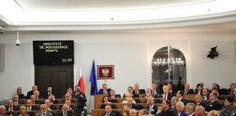 Delegacje Senatu do kontroli