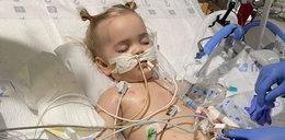 2-latka zmarła po połknięciu baterii. Walczyli o jej życie od listopada