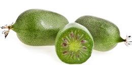 Nowy owoc podbija rynek!