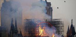 Naukowiec przewidział pożar Notre Dame