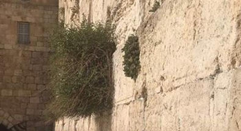Legend says that angels descended from heaven to protect this wall.