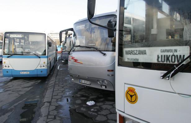 Wszędzie na świecie transport autokarowy to działalność dochodowa. By to osiągnąć, potrzebna jest jednak odpowiednia skala.