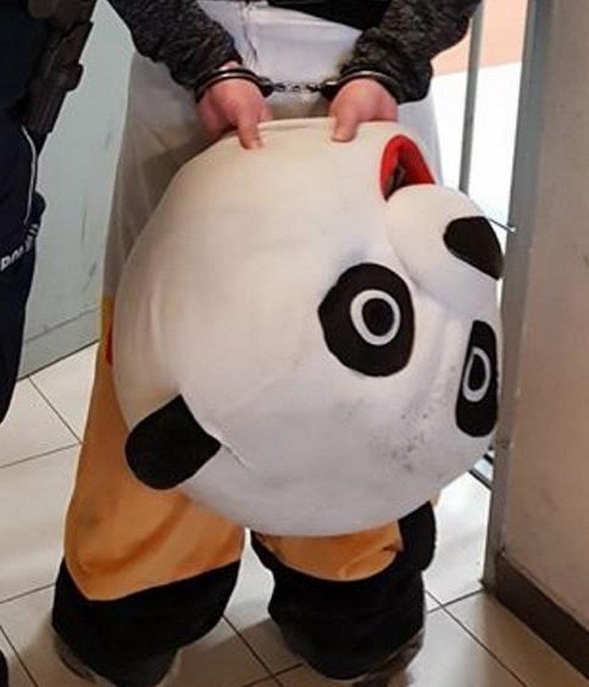 Zakopiańska policja zatrzymała... pandę