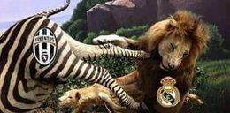 Memy po meczu Juventus Turyn – Real Madryt!
