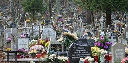1 listopada nie zabieraj tego na cmentarz! Możesz gorzko pożałować
