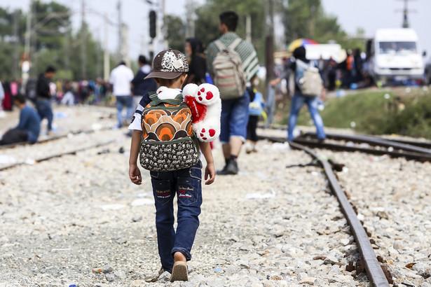 Kraje UE zmagają się obecnie z falą imigrantów, która wywołała w Europie najostrzejszy kryzys migracyjny od II wojny światowej.