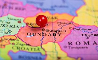 W Budapeszcie demonstracja przeciwko otwarciu kampusu chińskiego uniwersytetu