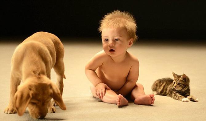 Bebe imaju veoma dobro pamćenje
