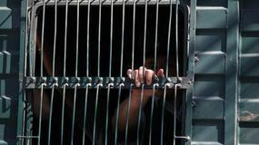 Jak namówić więźniów, by sięgnęli po książki? Odpowiedź jest prosta