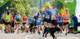 Psi Maraton w Parku Śląskim