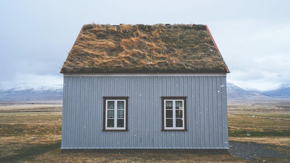 Zielone dachy są charakterystycznym symbolem krajów nordyckich