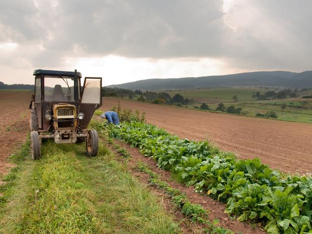 Wątpliwości w zakresie stosowania nowych przepisów miał producent maszyn rolniczych, które sprzedaje m.in. rolnikom ryczałtowym