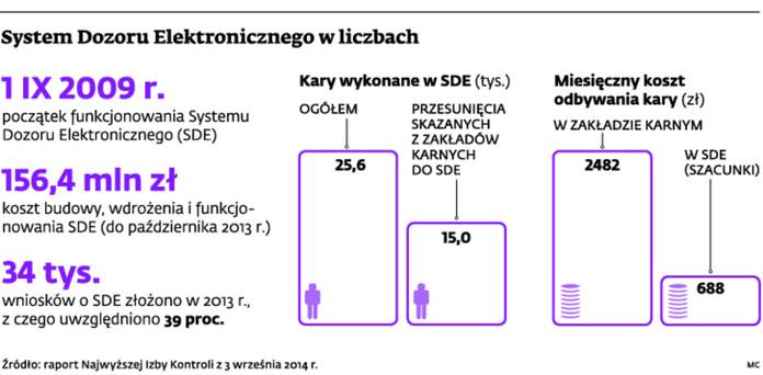 System Dozoru Elektronicznego w liczbach
