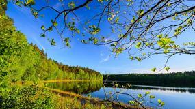 Oto najbardziej przejrzyste jezioro w Polsce