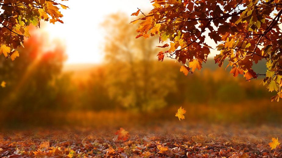 Równonoc jesienna wypada w tym roku 22 września