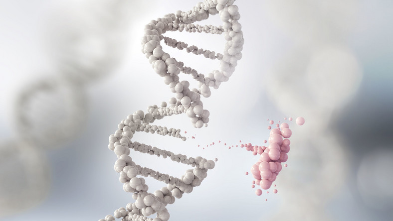 DNA, geny