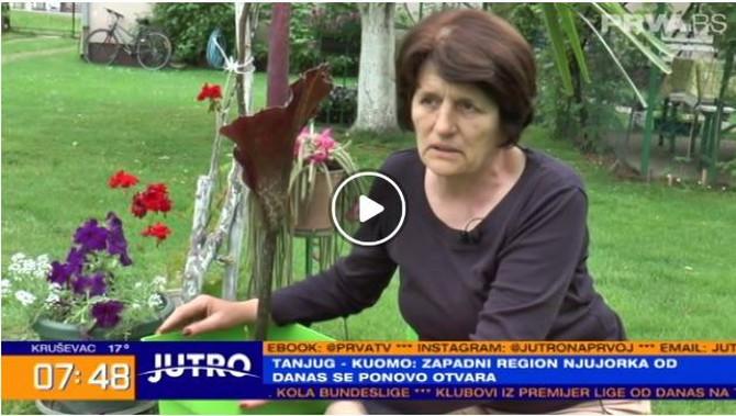 Selena Popović