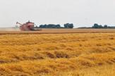 poljoprivredno zemljiste01 foto Robert Getel