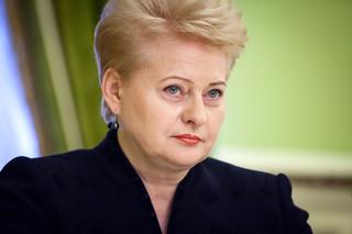 Premier Litwy: Wiele państw wdroży środki przeciw Rosji