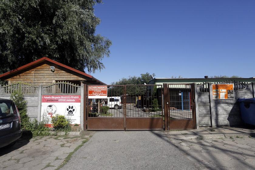 Schronisko dla zwierząt w Tczewie