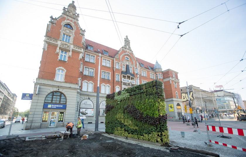 Katowice. Ogród wertykalny