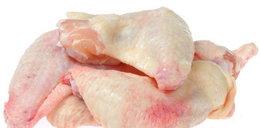 Niebezpieczne bakterie w mięsie kurczaków!