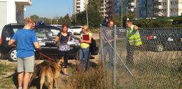 Strażnicy sprawdzili wybiegi dla psów