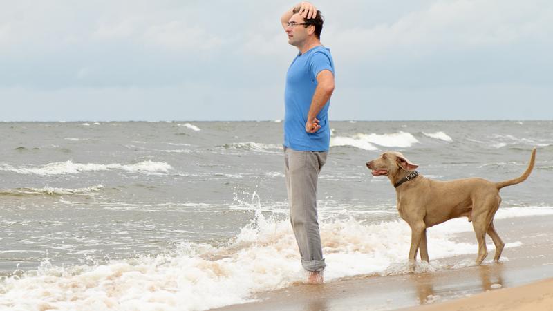 Z psem na miejskie plaże? Tylko w określonych miejscach