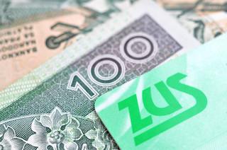 Rozliczający się kartą podatkową zapłacą składki od połowy sprzedaży