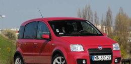 Fiat Panda 100 hp. Mały, lecz wysportowany miś!