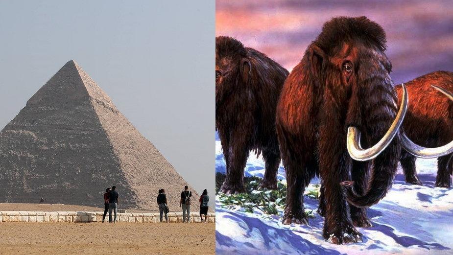 Piramidy i Mamuty