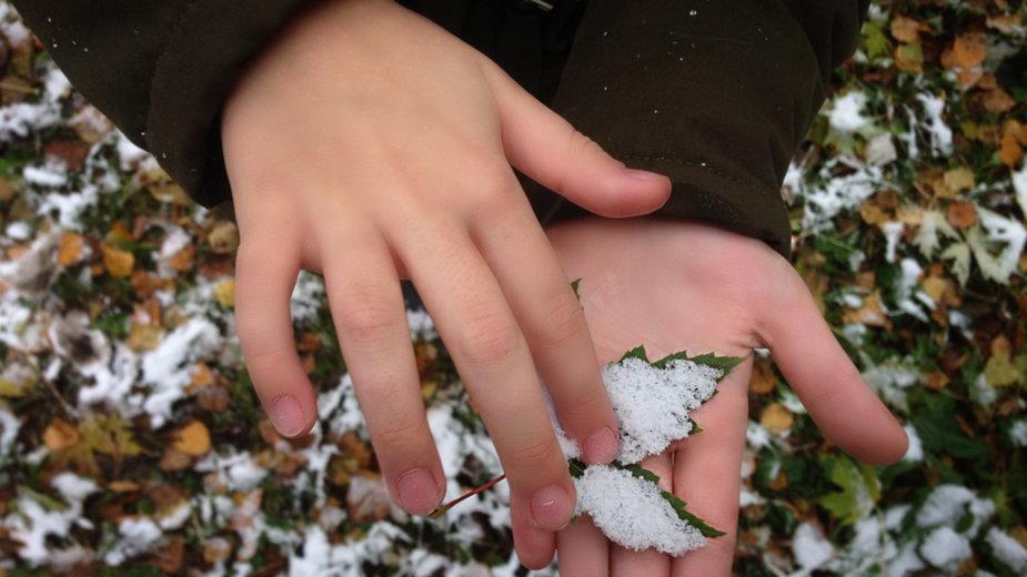 Pierwszy śnieg w Polsce (Zdjęcie ilustracyjne)