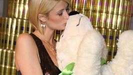 Paris Hilton wyszła z aresztu