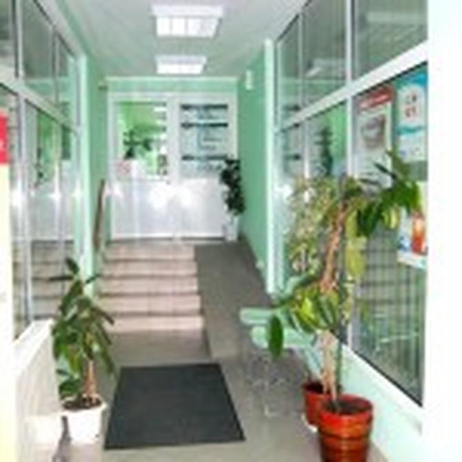 Klinika Impuls