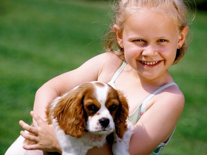 Značaj razvoja pozitivnog odnosa između deteta i psa od najranijeg uzrasta