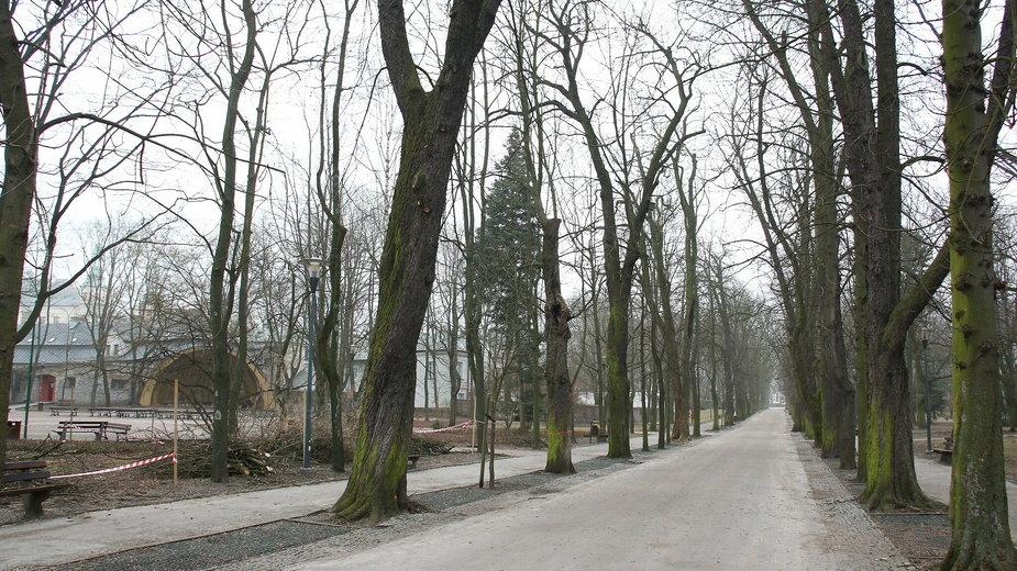 Koniec pierwszego etapu rewaloryzacji Parku Miejskiego w Kielcach