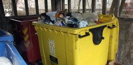 Za kilka miesięcy tyle zapłacisz za śmieci. Zdziwisz się