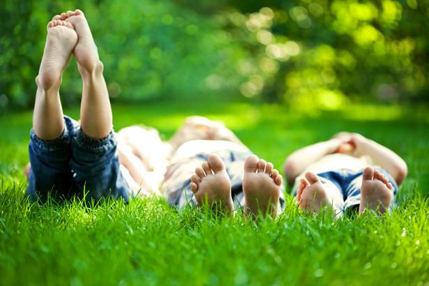 Dzieci leżące na trawie