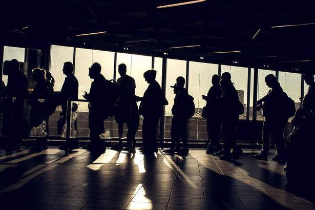 Jak podaje WSIiZ, w ubiegłym miesiącu wzrosła liczba rekrutacji prawie we wszystkich grupach ofert.