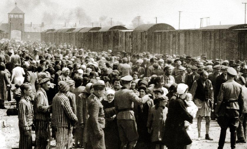 Helma M. była radiotelegrafistką w Auschwitz