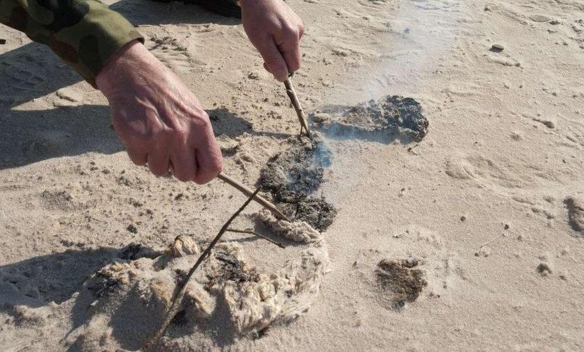 trucizna na plaży