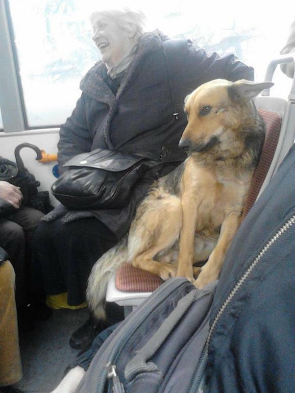 Često ni putnicima ne smeta