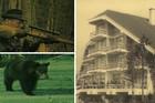 KUTAK U SRCU ŠUME Kako je zabačeno mesto u Bosni postalo ČETVRTI GRAD po životnom standardu u Jugoslaviji (VIDEO)