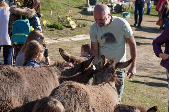Darko Saveljić, vlasnik farme magaraca Martinići