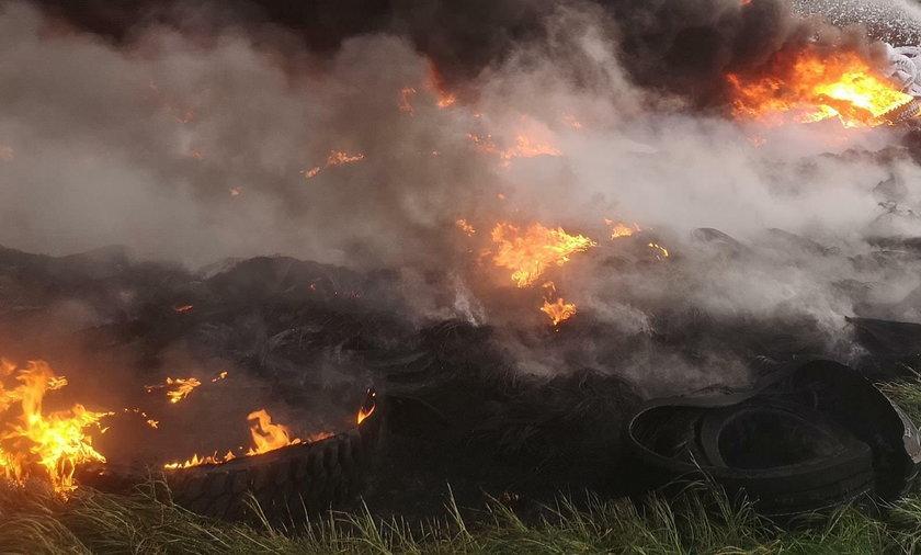 Litwa. Katastrofa ekologiczna przy granicy z Polską - zdj. ilustracyjne
