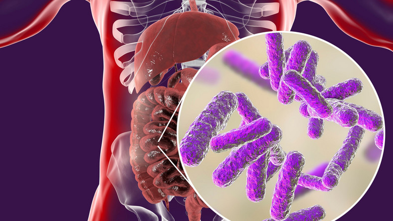 Bakterie jelitowe, mikrobiom