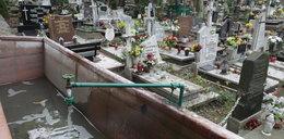 Sprawdziliśmy gdańskie cmentarze